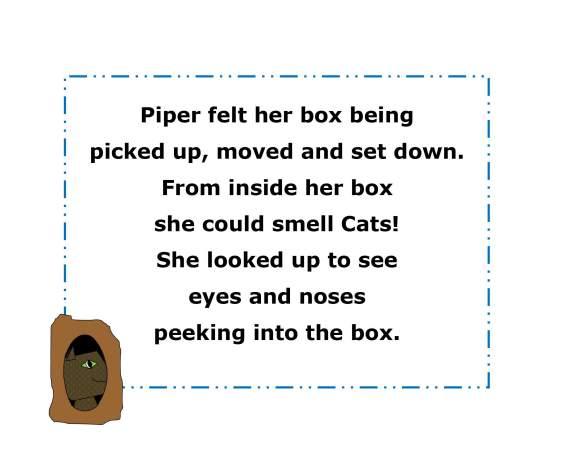 drainpipe kitten_0020