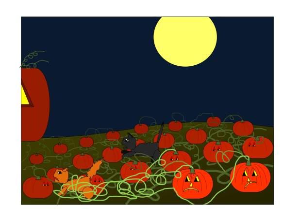 orange, black, pumpkin patch_0024