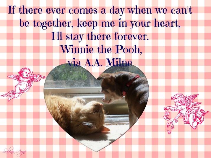 pooh quote